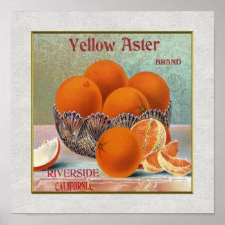 Naranjas amarillos de la marca del aster impresiones