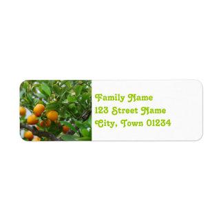 Naranjas de la Florida Etiqueta De Remite