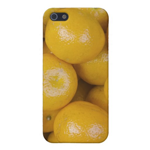 Naranjas de Ponkan iPhone 5 Protectores