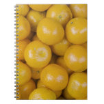 Naranjas de Ponkan Libro De Apuntes