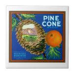 Naranjas del cono del pino tejas