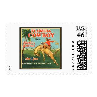 Naranjas del vaquero de la Florida y anuncio del v