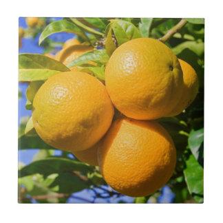 Naranjas en un árbol azulejo cuadrado pequeño
