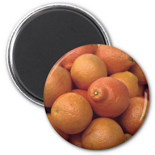 Naranjas Estado-crecidos deliciosos Imán Redondo 5 Cm