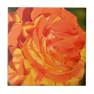 Naranjas limones del ` n' subiós azulejo cuadrado pequeño