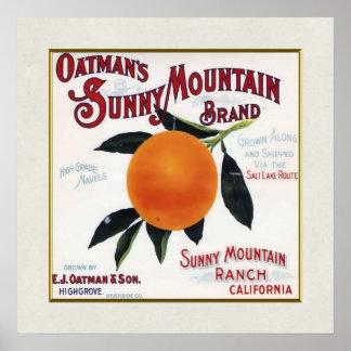 Naranjas soleados de la montaña de Oatmans Posters