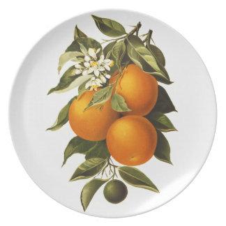 Naranjas y amapolas plato para fiesta
