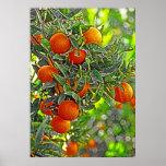 Naranjas y hojas (1) poster