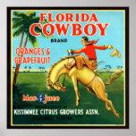 Naranjas y pomelos del vaquero de la Florida Poster