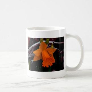 Narciso anaranjado taza