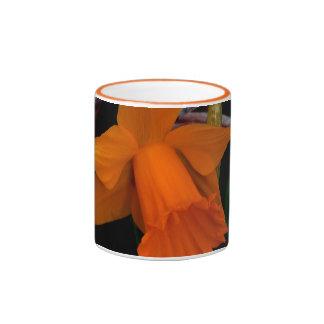 Narciso anaranjado taza de dos colores