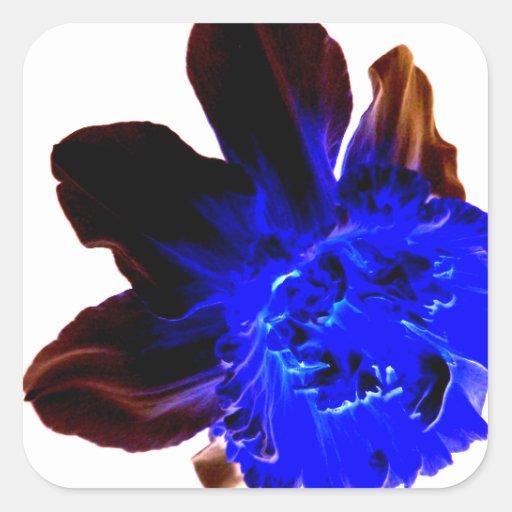 Narciso azul eléctrico del resplandor pegatina cuadrada