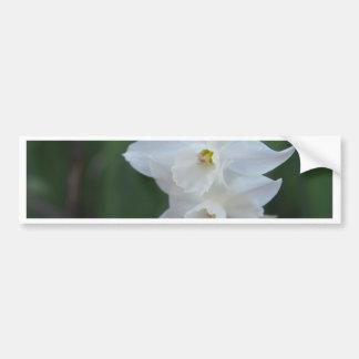 Narciso blanco pegatina para auto