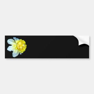 Narciso blanco y amarillo con volantes pegatina para auto