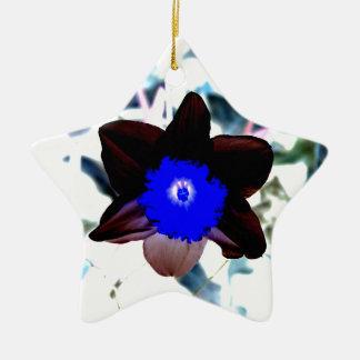 Narciso de la negativa de la foto adorno navideño de cerámica en forma de estrella