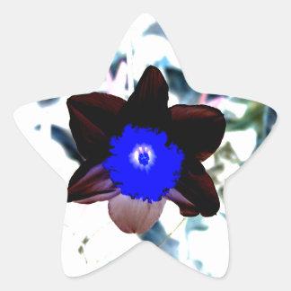 Narciso de la negativa de la foto pegatina en forma de estrella