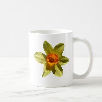 Narciso, flor del nacional Galés Taza Clásica