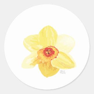 narciso Żonkila de la flor Pegatina Redonda