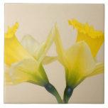 Narcisos amarillos azulejos