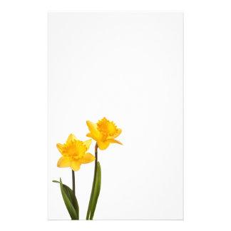 Narcisos amarillos de la primavera en blanco papelería de diseño