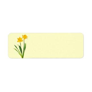Narcisos amarillos de la primavera - plantilla del etiqueta de remitente