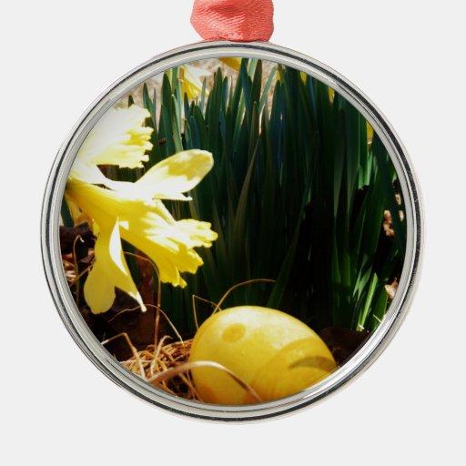 Narcisos amarillos de la primavera y un huevo de P Ornato