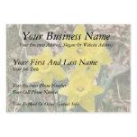 Narcisos amarillos felices tarjetas de visita