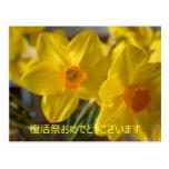 Narcisos amarillos pascua feliz en japonés tarjetas postales