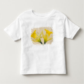 Narcisos amarillos playera de niño