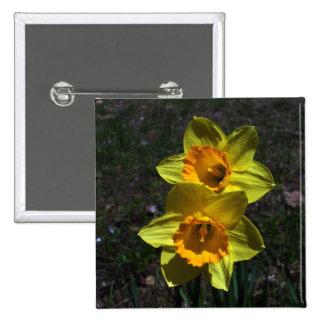 Narcisos amarillos preciosos pin cuadrado