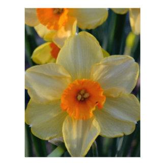 Narcisos anaranjados y amarillos membrete personalizado