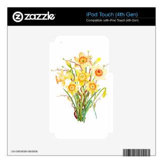 Narcisos de la flor de la primavera de la acuarela calcomanías para iPod touch 4G