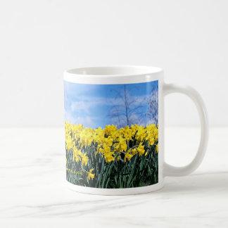 Narcisos de la primavera, Shrewsbury, Shropshire, Taza Básica Blanca