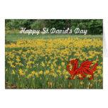 Narcisos del día de St David Tarjeta De Felicitación
