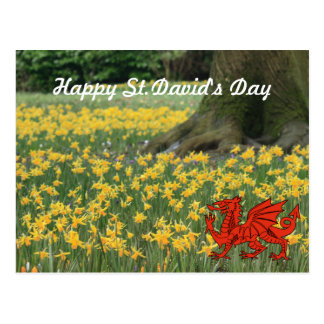 Narcisos del día de St David Postal
