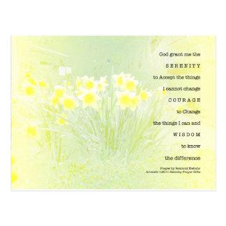 Narcisos del rezo de la serenidad tarjetas postales