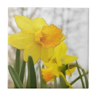 Narcisos Sunlit Azulejo Cuadrado Pequeño
