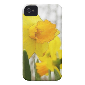 Narcisos Sunlit Case-Mate iPhone 4 Protectores