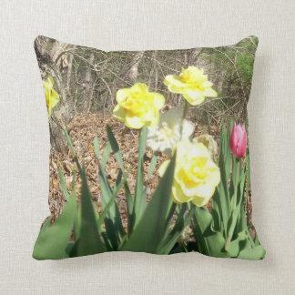 Narcisos y 1 almohada roja del tulipán