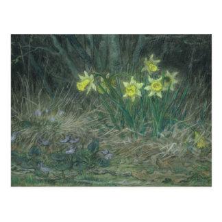 Narcissi and Violets, c.1867 Postcard