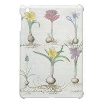 Narcissi, Crocuses and Hyacinth: 1.Narcissus autum iPad Mini Cover