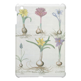 Narcissi, Crocuses and Hyacinth: 1.Narcissus autum iPad Mini Covers