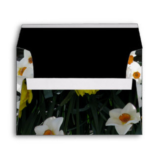 Narcissus and Wooden Fence Envelope
