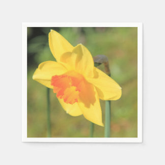 Narcissus by Thespringgarden Paper Napkin