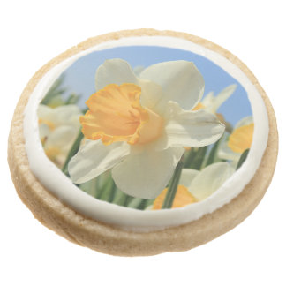 Narcissus by Thespringgarden Round Shortbread Cookie