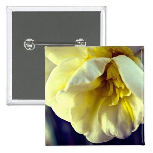 Narcissus Daffodil Pins