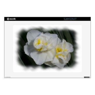 Narcissus Daffodil musicskins_skin