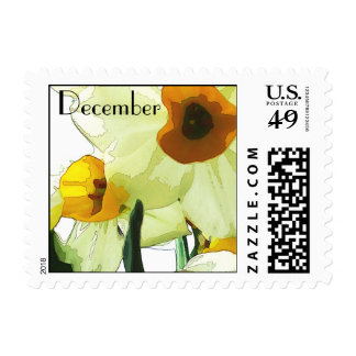 Narcissus is the birthday flower for December Postage