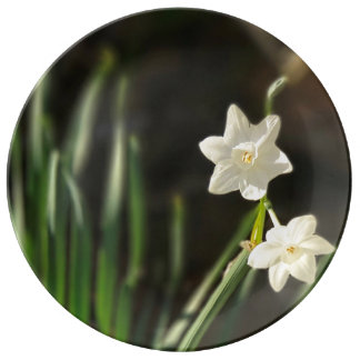 Narcissus Paperwhites Fine Porcelain Plate