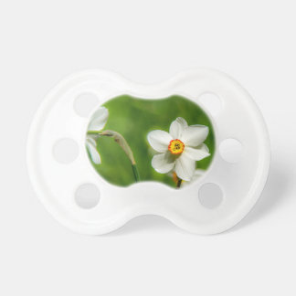 Narcissus Plant Pacifier